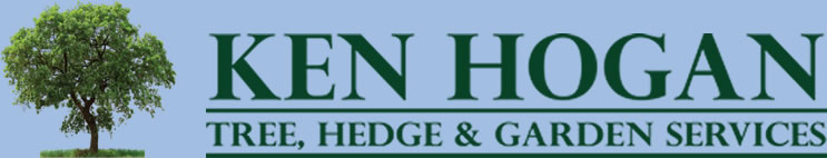Ken Hogan Tree Services