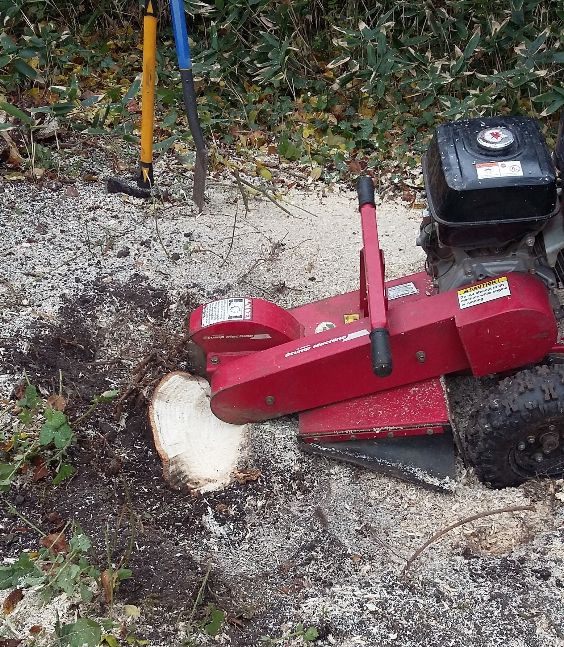 Stump Grinding at end of job